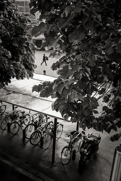 Arrivée au stade de France, une composition rappelle Ronis Cartier Bresson et Boubat